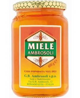 AMBROSOLI MIELE GR.500