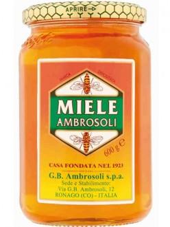 AMBROSOLI MIELE GR.600