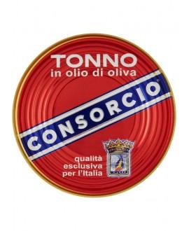 CONSORCIO TONNO GR.111